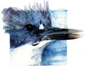 belted kingfisher, watercolor